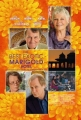 the-best-exotic-marigold-hotel-poster-02
