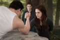the-twilight-saga-breaking-dawn-part-ii-65