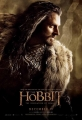 the-hobbit-the-desolation-of-smaug-poster-08
