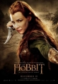 the-hobbit-the-desolation-of-smaug-poster-12
