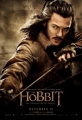 the-hobbit-the-desolation-of-smaug-poster-14