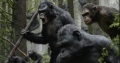 dawn-of-the-planet-of-the-apes-03