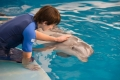 dolphin-tale-2-05