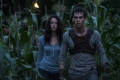 the-maze-runner-15