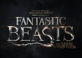 Eddie Redmayne Explains Approach to 'Fantastic Beasts' Sequel Titles