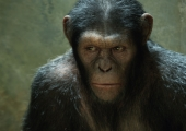 12 Monkey Movies To Fill The Agonizing Wait Until 'Planet Of The Apes 3′