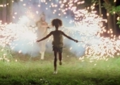 Bests of the Southern Wild